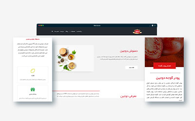 طراحی فروشگاه اینترنتی دوجین